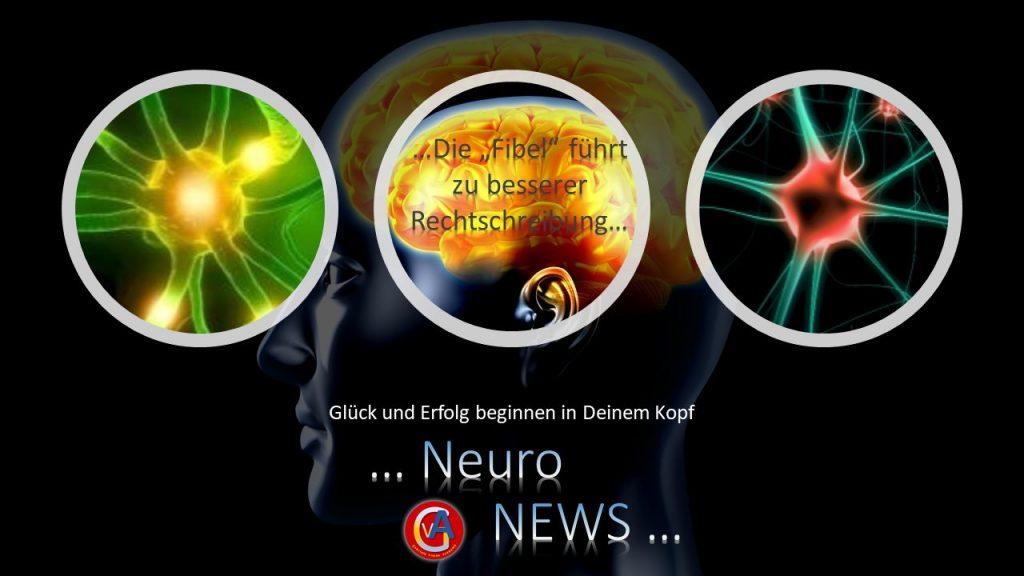 """Neuro News - Die """"Fibel"""" führt zu besserer Rechtschreibung"""