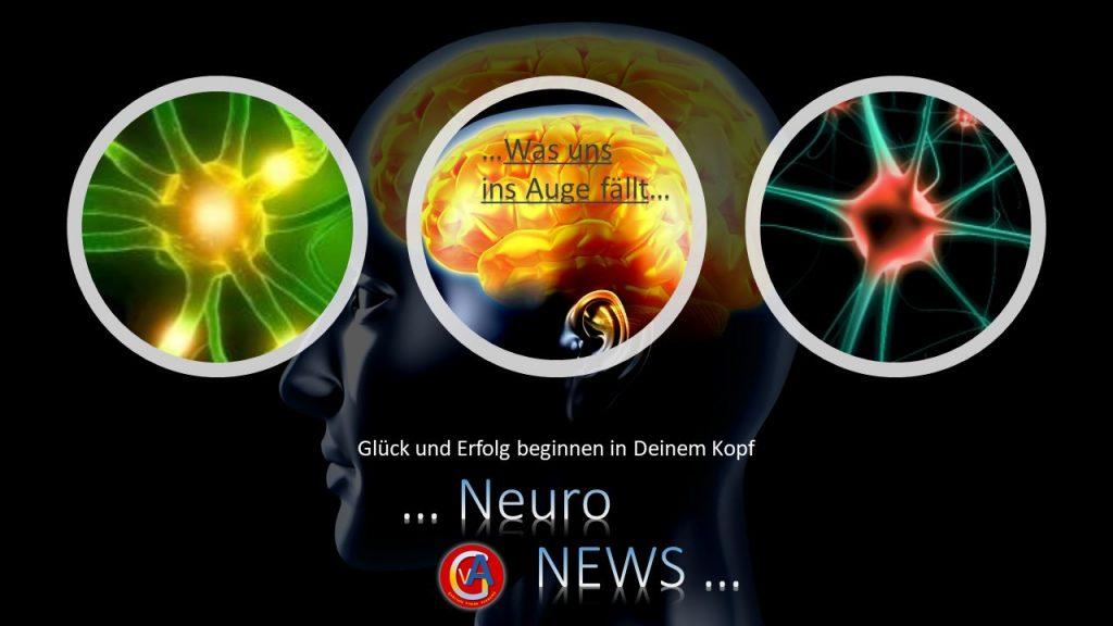 Neuro News - Was uns ins Auge fällt