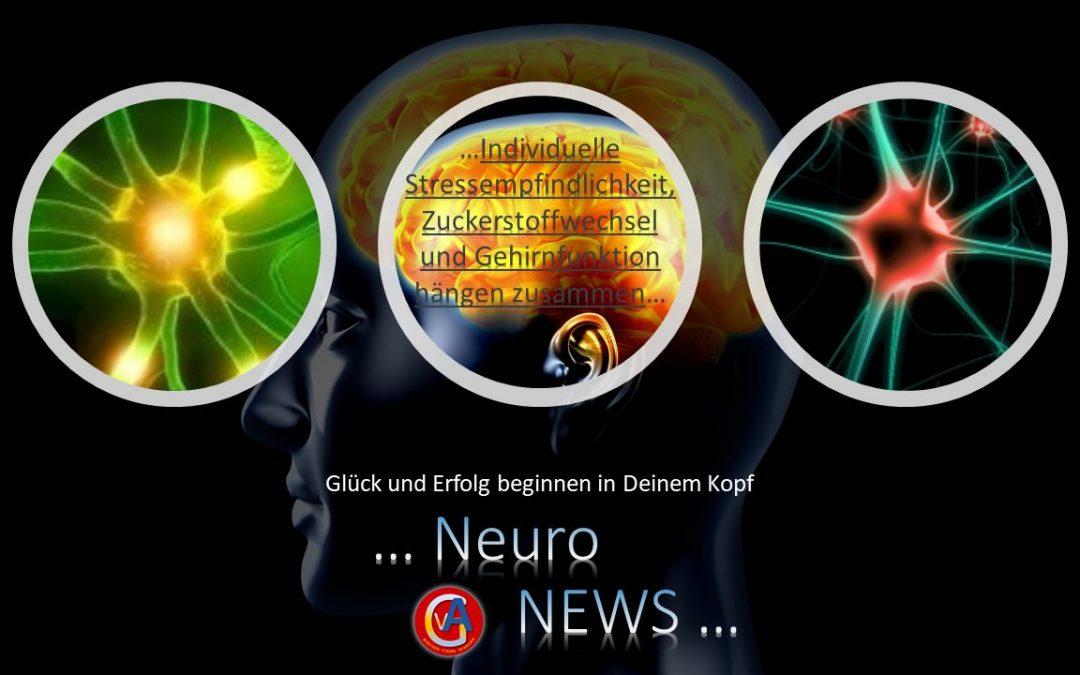 Individuelle Stressempfindlichkeit, Zuckerstoffwechsel und Gehirnfunktion hängen zusammen
